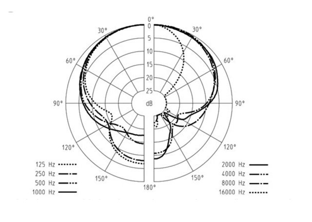 Microphone Polar Pattern