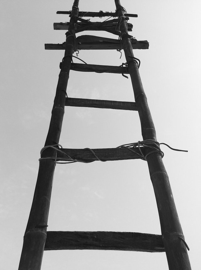 leadership ladder.jpg