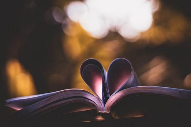 art-blur-bokeh-love-book.jpg