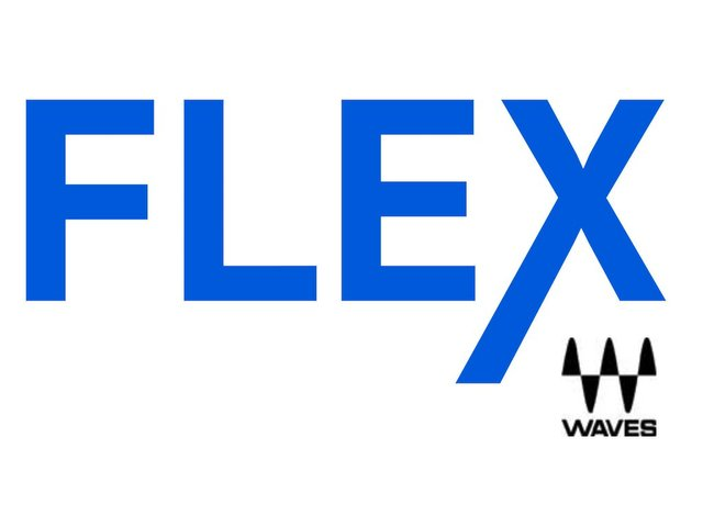 Waves Audio Flex logo .jpg