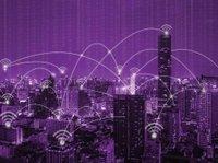 purple-image.jpg