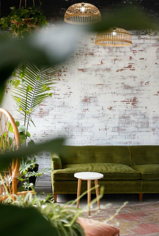 selective-focus-photography-of-green-sofa-2610269.jpg.jpe
