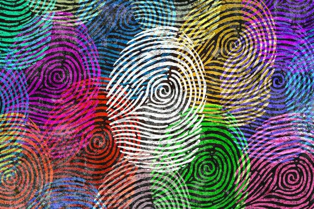 fingerprints.jpg.jpe