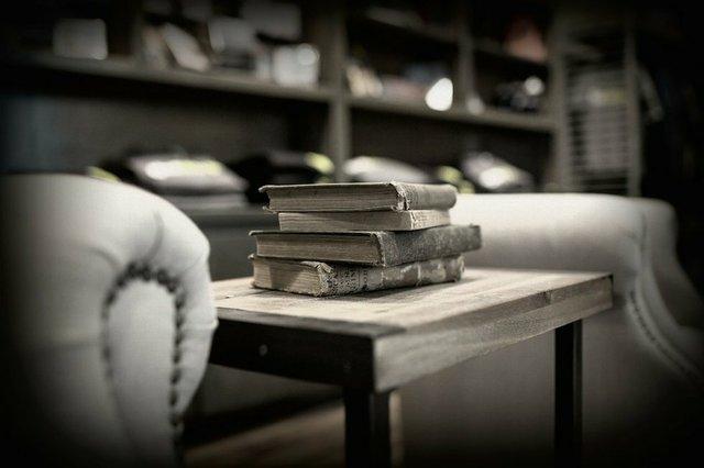 books interior sassafras.jpg.jpe