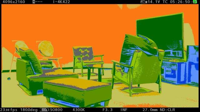 Varicam VLT EL Zone 1 copy 2.jpg